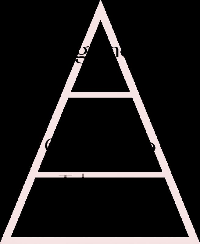 piramide olfattiva angelique mathilde m